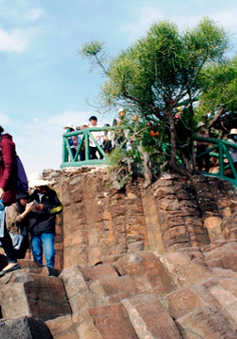 Phú Yên: Lượng du khách tăng mạnh nhờ kích cầu du lịch nội địa