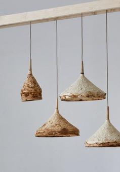 Đồ nội thất được làm từ... nấm