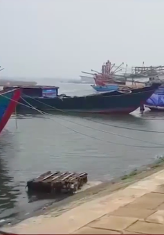 Bất cập bến neo đậu tàu thuyền ở Quảng Trị