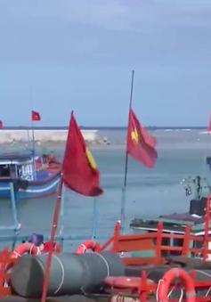 Vì lợi nhuận, ngư dân đánh bắt bất chấp pháp luật