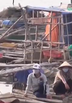 """Quảng Ngãi: Cảnh báo """"trắng tay"""" vì ồ ạt nuôi hải sản tự phát"""