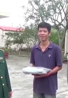 Đà Nẵng: Giải cứu 4 thuyền viên bị giam giữ, cưỡng ép lao động