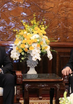 Quan hệ Việt Nam - Áo: Thương mại, đầu tư đang trên đà phát triển mạnh mẽ