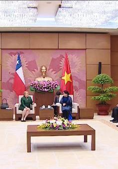 Chủ tịch Quốc hội tiếp Tổng thống Chile