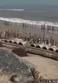 """Hội thảo quốc tế lần thứ 5 về """"Cửa sông, bờ biển và kỹ thuật sông ngòi"""""""