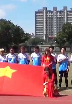 Việt Nam dự Giải bóng đá Đông Nam Á Cup Đào Viên 2017