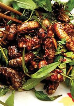 Những món ăn Việt ngon miệng nhưng tiềm ẩn nguy hiểm