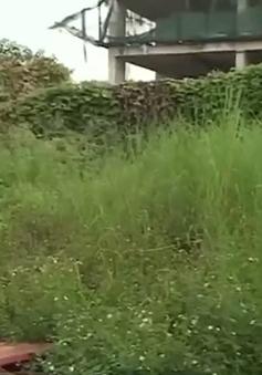 Hà Nội sẽ thu hồi hàng nghìn m2 đất dự án bỏ hoang
