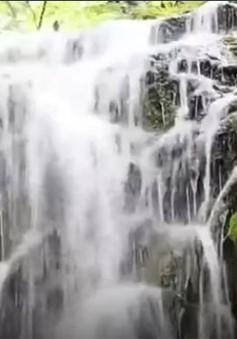 Chiêm ngưỡng cảnh đẹp khu bảo tồn rừng quốc gia Thần Nông Giá (Trung Quốc)