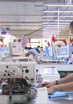 Kim ngạch xuất khẩu hàng hóa của Việt Nam vượt gần 3%