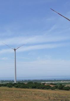 Các dự án điện gió tại Việt Nam vẫn ít