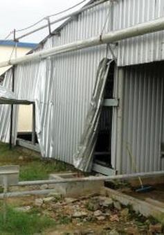 Phó Thủ tướng yêu cầu điều tra vụ tai nạn làm 5 người chết ở Phú Yên