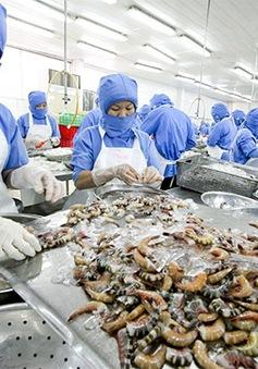 Kiểm tra lô hàng thủy sản xuất khẩu chỉ còn mất 8 tiếng