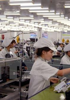 Phát triển các DN tư nhân đủ lớn để làm trụ cột cho nền kinh tế