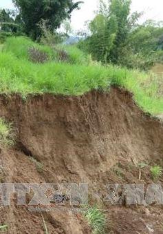 Lâm Đồng tiếp tục tạm dừng khai thác cát trên sông Đồng Nai