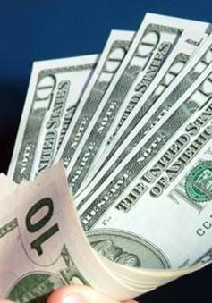 Đồng USD tăng lên mức cao trong 8 tuần