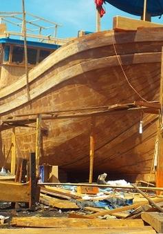 Đóng mới, nâng cấp tàu cá theo Nghị định 67