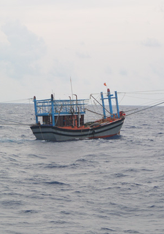 Cứu 3 thuyền viên bị ngạt khí gas khi đánh bắt trên biển