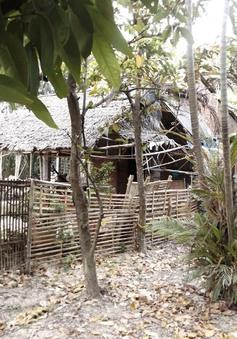 Bắt tạm giam 2 cha con hiếp dâm trẻ em tại Vĩnh Long