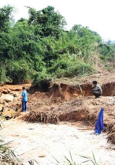Triệt phá mỏ vàng trái phép ở Lâm Đồng