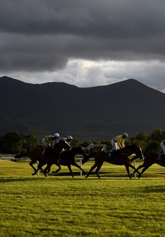 Ngành công nghiệp đua ngựa tỷ USD của Ireland đối mặt khó khăn do Brexit
