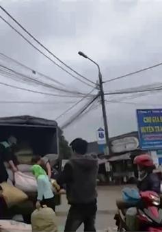 Tấp nập mua bán vận chuyển dược liệu ở Cao Bằng