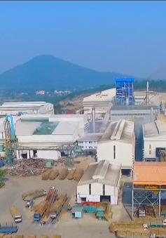 Hàng chục nhà máy đường có nguy cơ đóng cửa