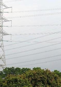 Việt Nam có nguy cơ thiếu hụt năng lượng