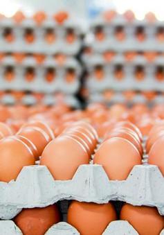 """Bê bối trứng """"bẩn"""" lan rộng"""
