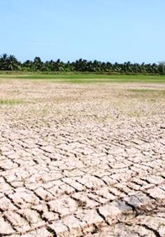 El Nino có thể quay lại trong năm nay