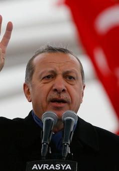 Vai trò của Tổng thống Erdogan sau cuộc trưng cầu dân ý