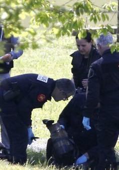 Tổ chức ly khai xứ Basque giao nộp vũ khí