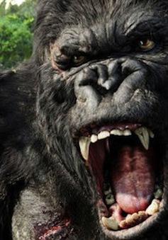 """Kong: Skull Island gây """"sốc"""" với những kỷ lục tại Việt Nam"""