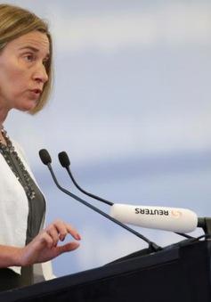 Nga - EU phối hợp giải quyết các điểm nóng