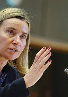 """EU coi mối quan hệ hợp tác với Nga là """"cốt yếu"""""""