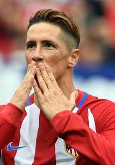 Torres bất ngờ tiết lộ ý định treo giày