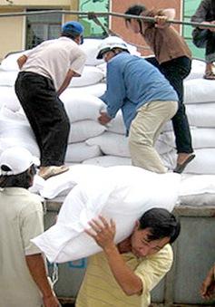 Thủ tướng chỉ đạo hỗ trợ gạo cho Nghệ An