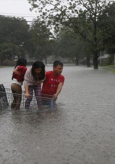 Mỹ huy động 12.000 vệ binh quốc gia đối phó bão Harvey ở Texas