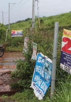 """Giá đất vùng phụ cận sân bay Long Thành bị đẩy lên do """"sốt ảo"""""""