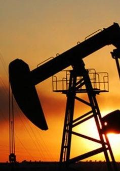 Giá dầu vượt ngưỡng 50 USD/thùng lần đầu tiên kể từ tháng 5