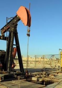 Giá dầu châu Á tiếp tục tăng do kỳ vọng OPEC cắt giảm sản lượng