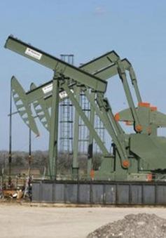 Giá dầu thế giới tiếp tục giảm