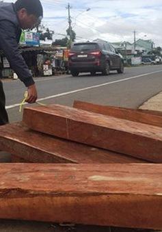 Tài xế bỏ lại gỗ quý bên đường để chạy trốn công an