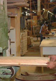 Nhiều doanh nghiệp nhập khẩu gỗ từ Lào đứng trước nguy cơ phá sản