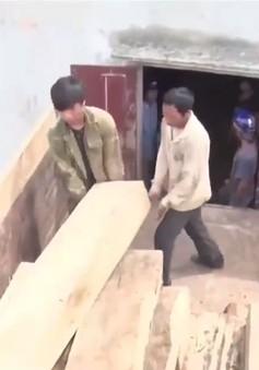 Kon Tum: Phát hiện gỗ lậu trong nhà dân