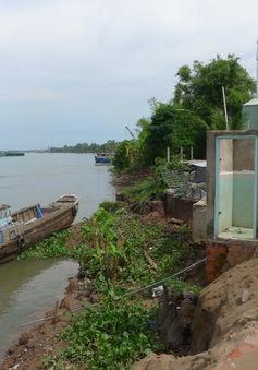 Gần 2.500 hộ dân Đồng Tháp sống trong vùng sạt lở