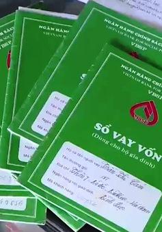 Hà Nam: Cả làng vỡ nợ vì giá lợn thấp kỷ lục