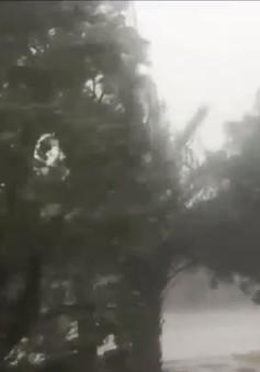 Hà Tĩnh: Áp lực vận hành công trình thủy lợi trước bão số 10