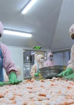EU cảnh báo rút thẻ vàng với hải sản Việt Nam