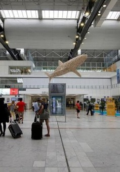 Ngành hàng không thế giới kỳ vọng doanh thu năm 2017 đạt 31,4 tỷ USD